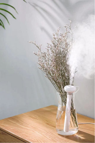 Bumi Ultrasonic Air Humidifier