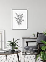 ZZ Plant line drawing print wall art by Deni Minar for plant lovers