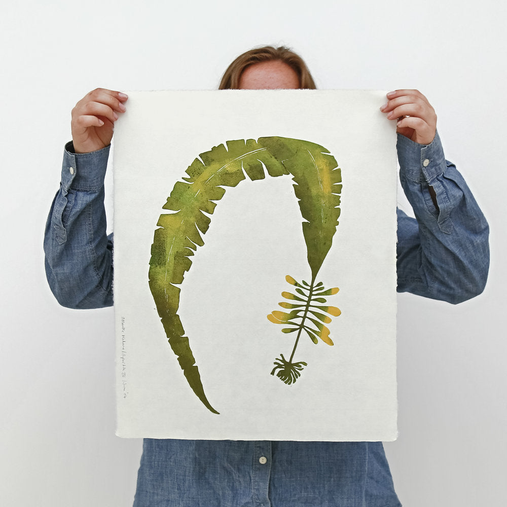 Superfolk | Atlantic Wakame Wild Seaweed Print