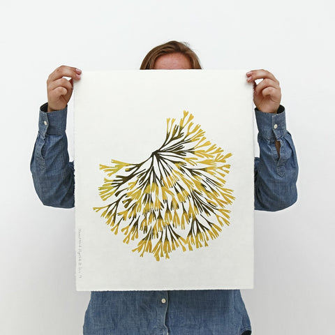Superfolk | Channelled Wrack Print