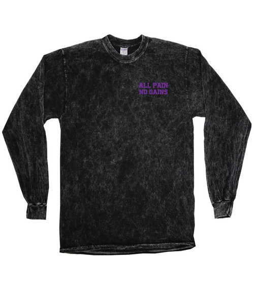 All Pain. No Gains. (Mineral Wash Longsleeve)