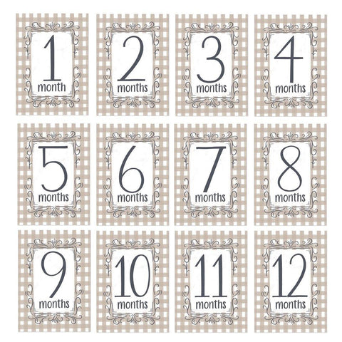Gingham Monthly Baby Milestone Cards - Digital Download