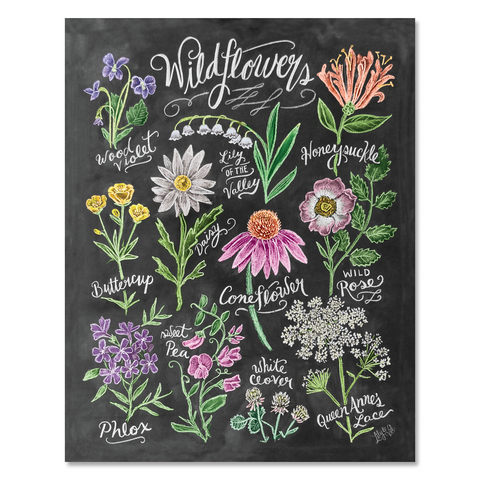Wildflower Field Guide - Print