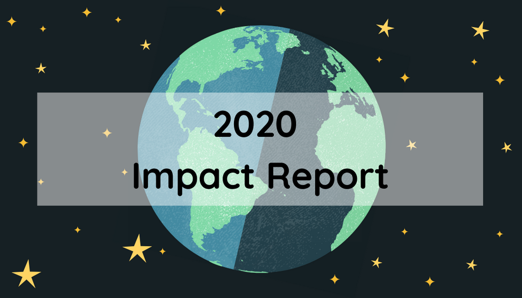 MamaP's 2020 Impact Report - Read Now