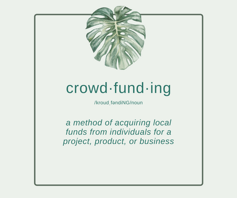 what is crowdfunding explained