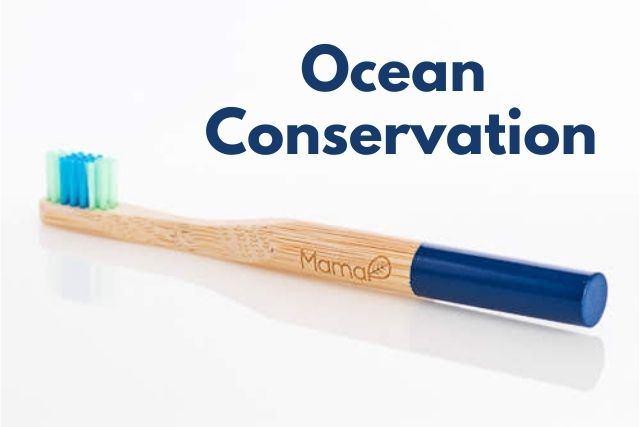 ocean conservation bamboo toothbrush