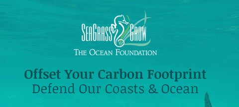 seagrass grow sea grass mamap mama p bamboo brush climate change carbon offset ocean foundation
