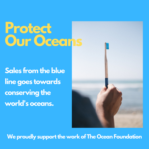 MamaP blue bamboo toothbrush supports ocean conservation and reduces plastic. the handle is biodegradable.