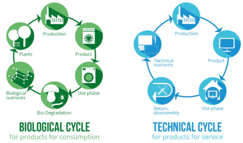 Two types of circular economies