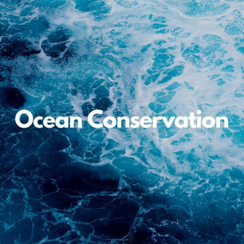 Give back to ocean conservation with the MamaP blue line