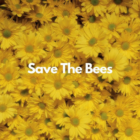 save the bees with the mamap bamboo toothbrush