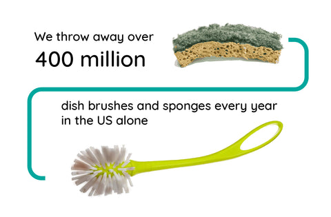 sponges have been scientifically proven to harbor more bacteria than a toilet