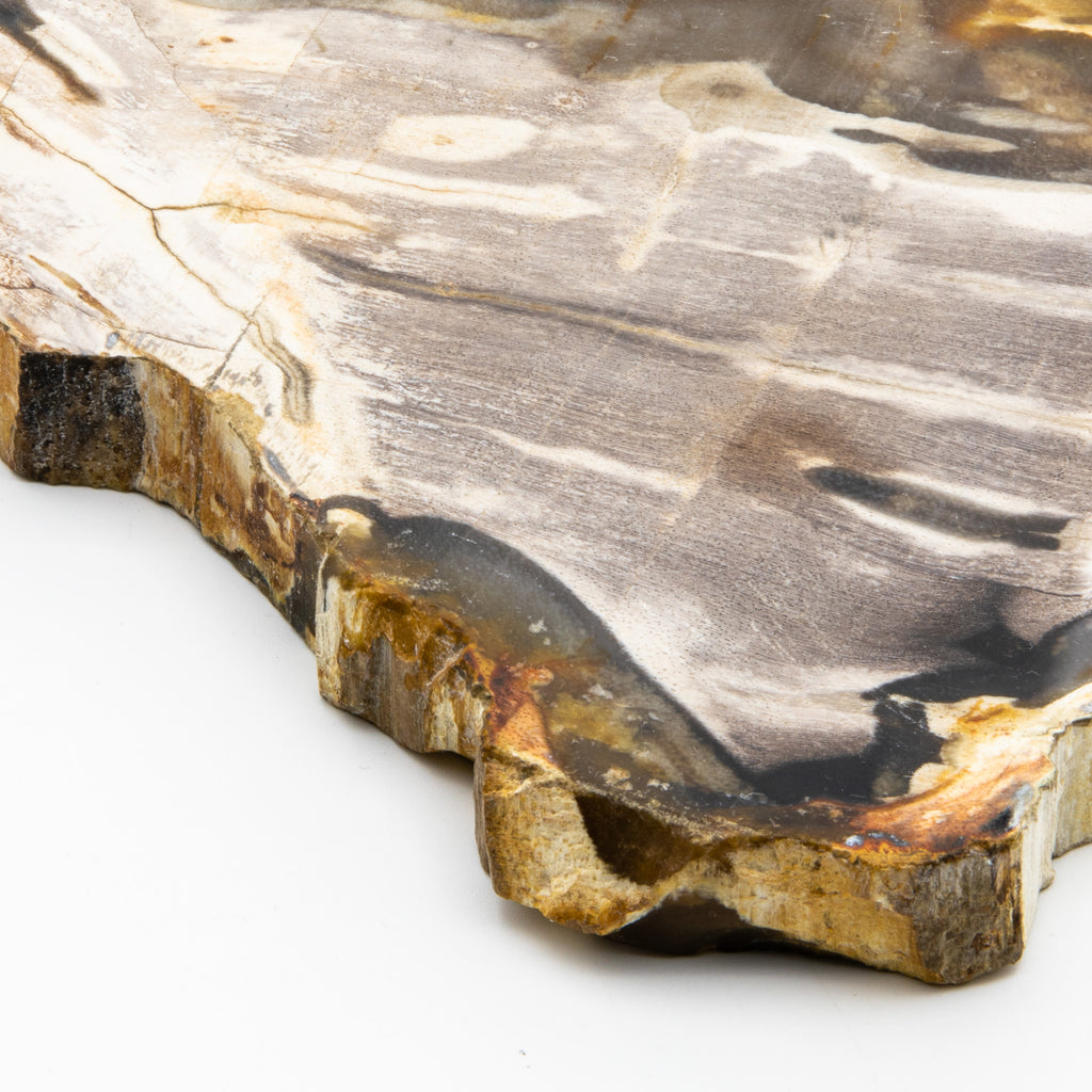 Petrified Wood Alter