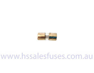 1AG 6.3mm x 16mm Fast Glass Fuse