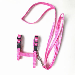 Nylon Adjustable Comfort Soft Pet Cat Harness And Leash Pets Belt Accessories For Cat Collar