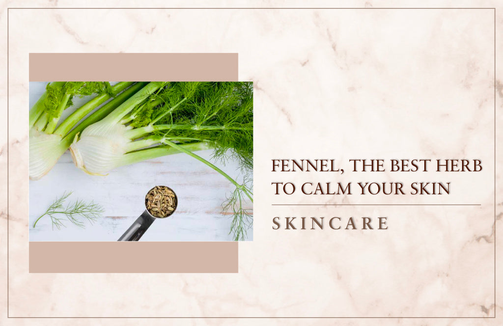Fennel, The best herb to calm your skin