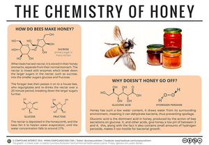 Why doesn't honey go bad?