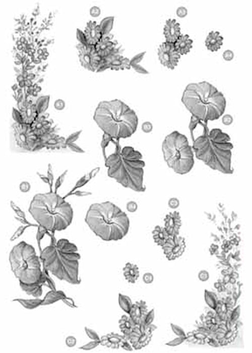 Craft UK Floral - Corners/Morning Glories - Silver