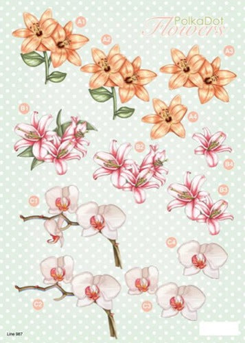 Craft UK 3-D Precut Sheet  Flowers - Lilies