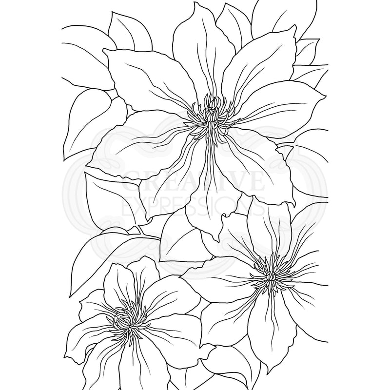 Woodware Clear Singles Clematis 4 in x 6 in Stamp