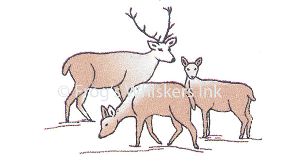 Frog's Whiskers Stamps - Deer Family