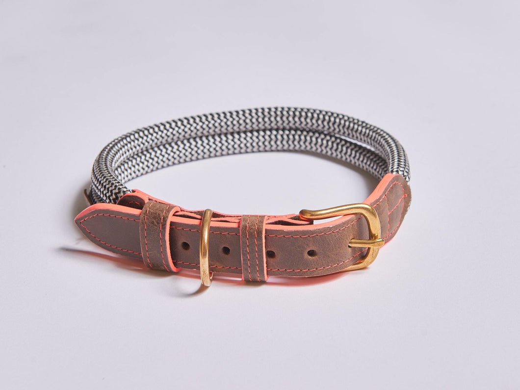 Chommies Large Dog Collar in Coral - Hadeda Limited