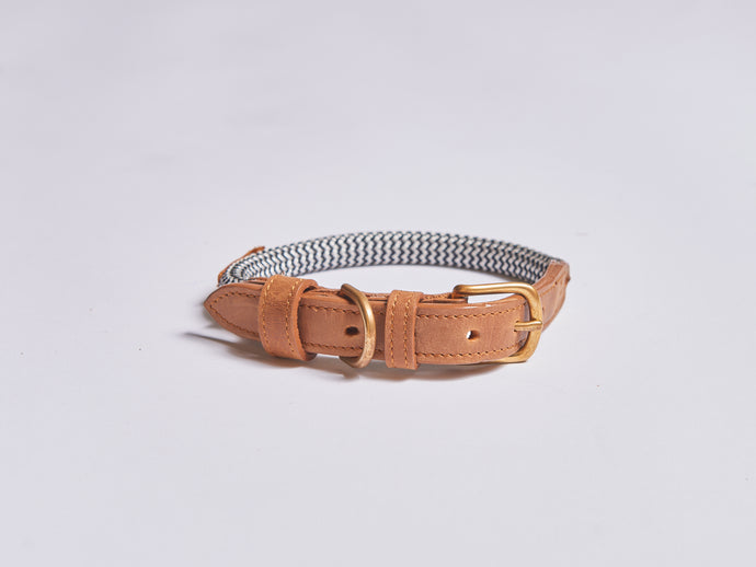 Chommies Small Dog Collar in tan leather
