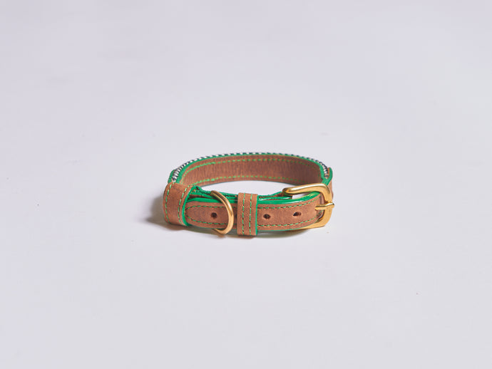 Chommies XS Dog Collar in Green