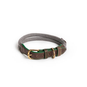 Large Dog Collar in Green