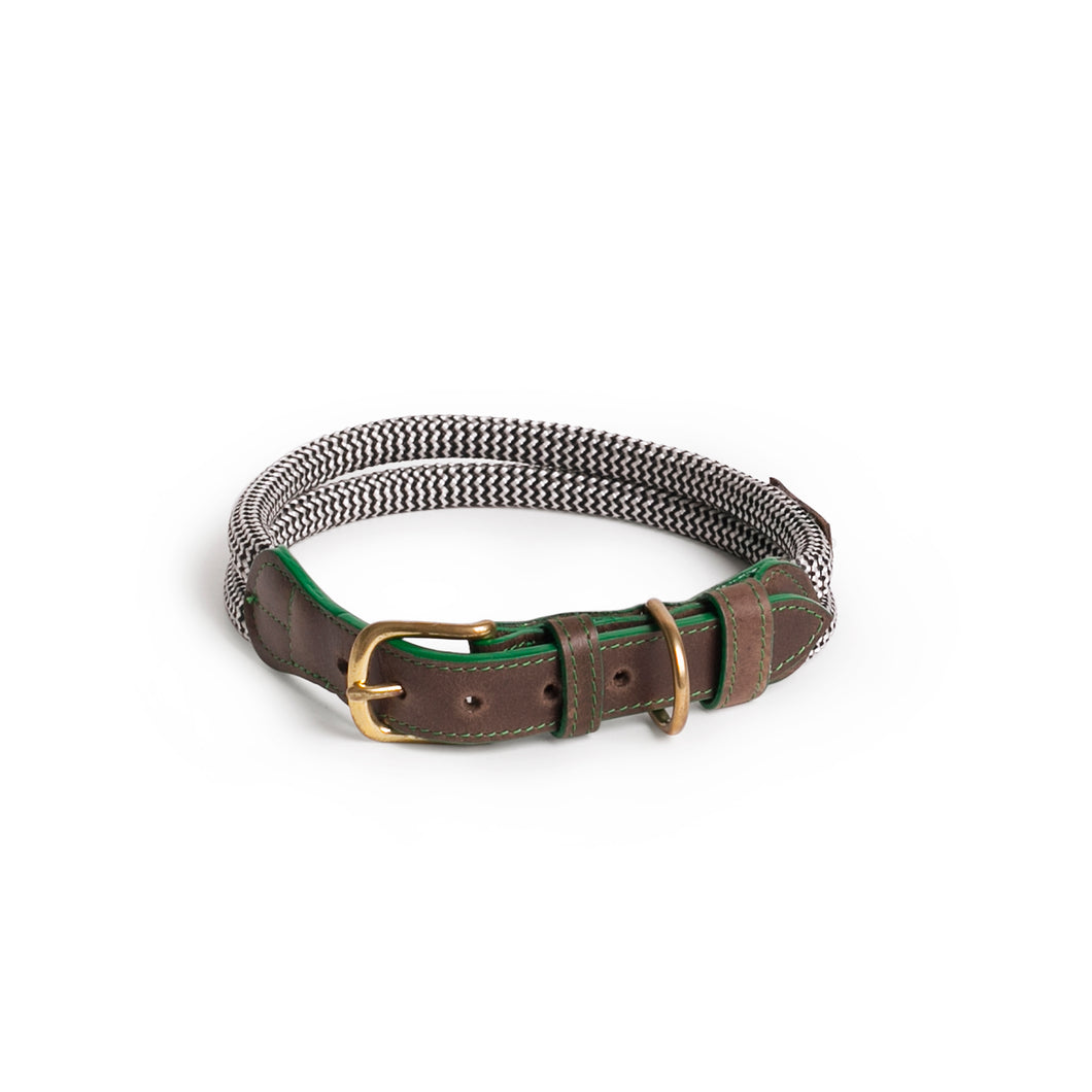 Chommies Large Dog Collar in Green