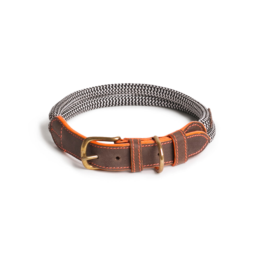 Chommies Large Dog Collar in Orange