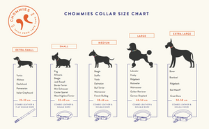 Chommies Extra Large Dog Collar in Coral