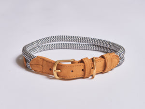 Chommies Extra Large Dog Collar in Tan Leather