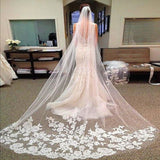 Catherdral Wedding Veil with lace edge