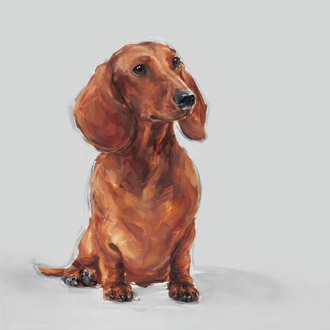 7. Red Dachshund Limited Edition Print