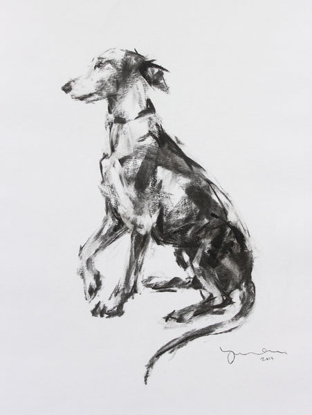 SOLD - Whippet Paw Charcoal sketch ORIGINAL