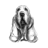 Basset Hound Dog Sketch Print