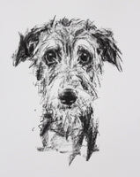 SOLD Lurcher Portrait Charcoal sketch ORIGINAL drawing