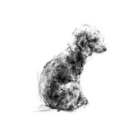 Bedlington Terrier Sketch Print