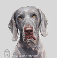 Weimaraner Portrait Oil Painting ORIGINAL