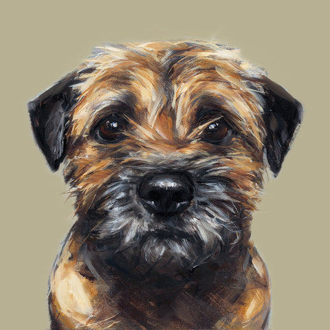 3. Border Terrier Limited Edition Print