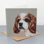 Cavalier King Charles Greetings Card