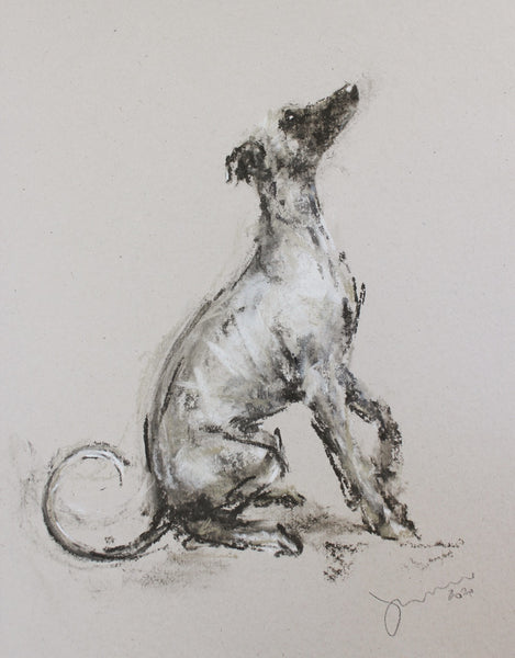 """Pause"" Chalk whippet sketch ORIGINAL drawing - SOLD"