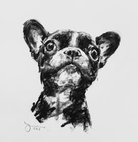 French Bulldog Charcoal sketch ORIGINAL drawing