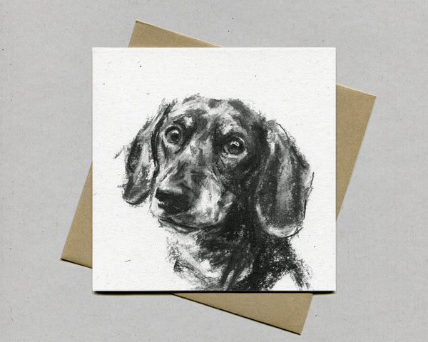 Dachshund portrait Fine art card