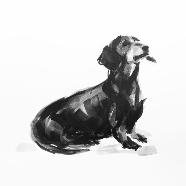 SOLD Dachshund ORIGINAL dog drawing - ink on paper