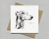 Greyhound Fine art card