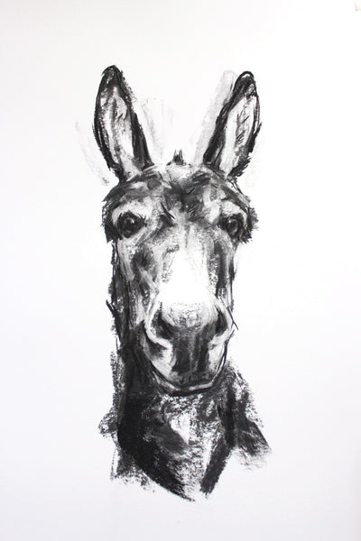 SOLD Donkey Portrait Charcoal sketch ORIGINAL