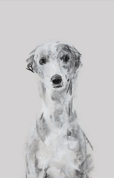 """Ethereal"" Whippet Sketch Print"