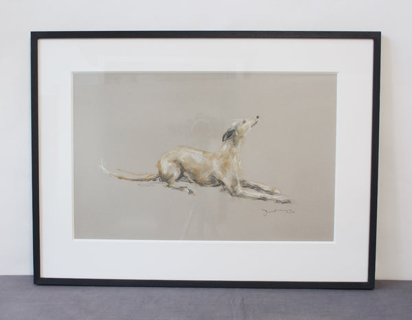 """Blissful"" whippet pastel ORIGINAL dog drawing FRAMED"